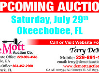 Demott auction f 0020 2617