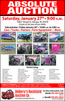 Deberrys rock solid auction f 0030 5217